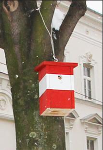 sagjazuoesterreichvogel